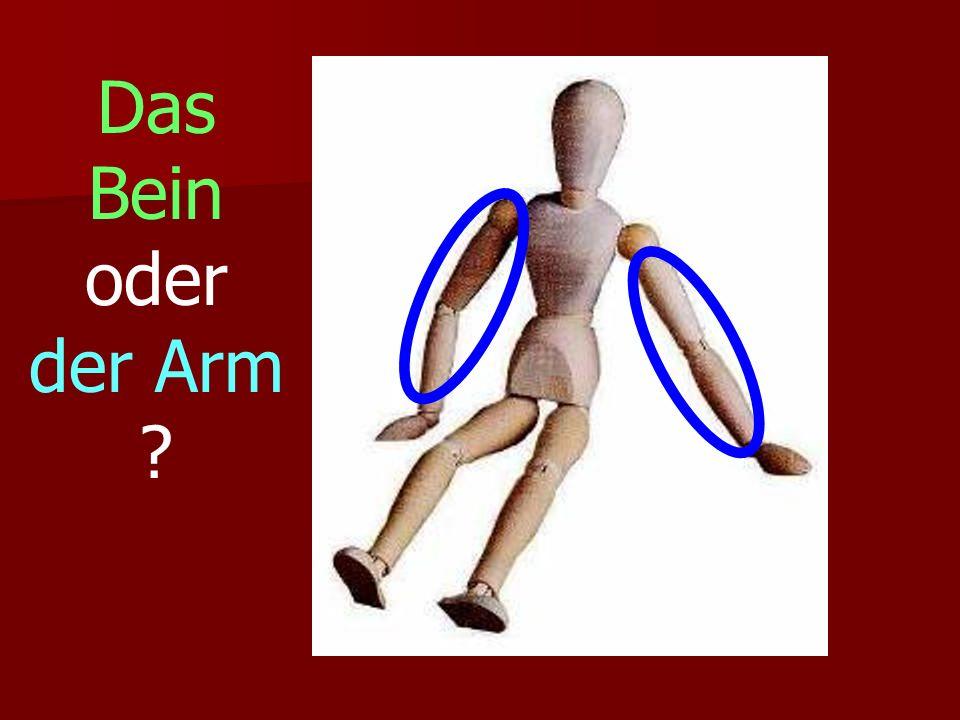 Das Bein oder der Arm ?