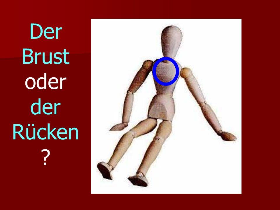 Der Brust oder der Rücken ?