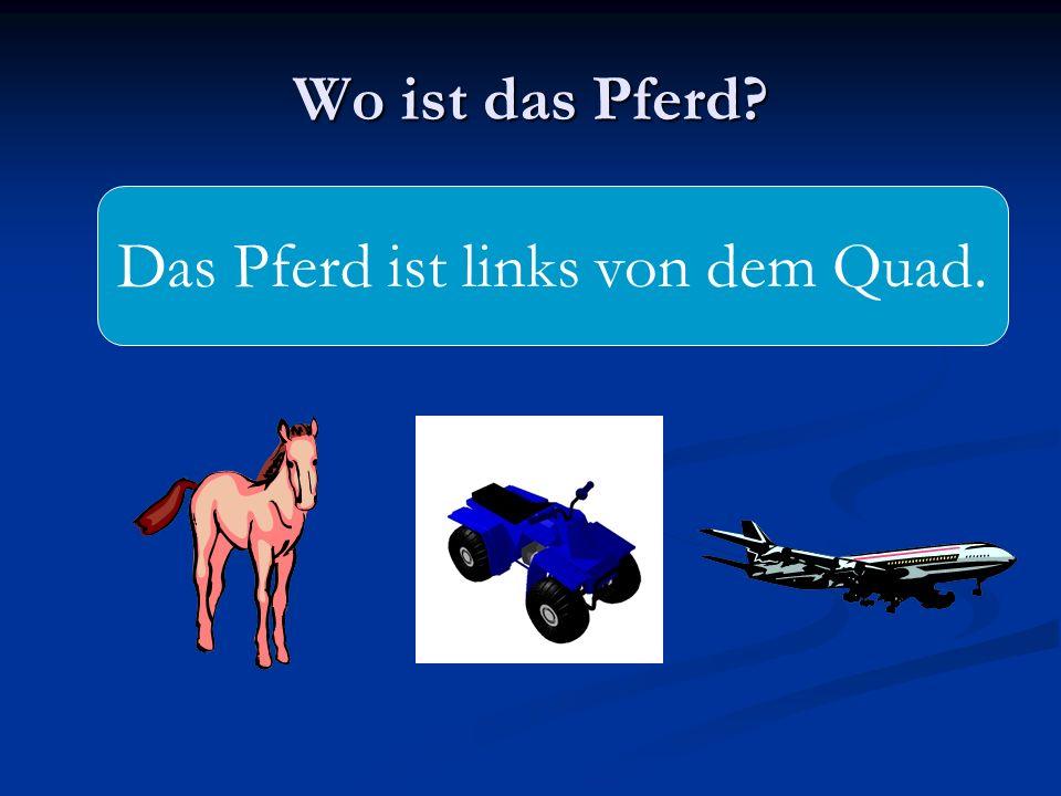 Wo ist das Pferd? Das Pferd ist links von dem Quad.