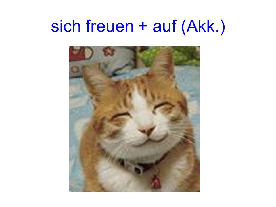 sich freuen + auf (Akk.)