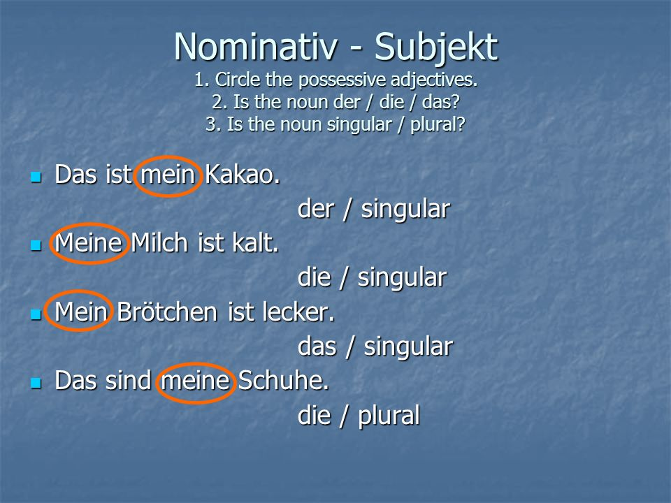Nominativ - Subjekt 1. Circle the possessive adjectives. 2. Is the noun der / die / das? 3. Is the noun singular / plural? Das ist mein Kakao. Das ist