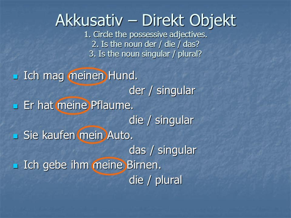 1.Ich habe ____ Aufschnitt nicht gesehen. (his) seinen - Akk, der, singular 2.