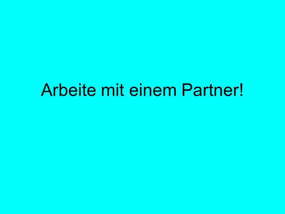 Arbeite mit einem Partner!