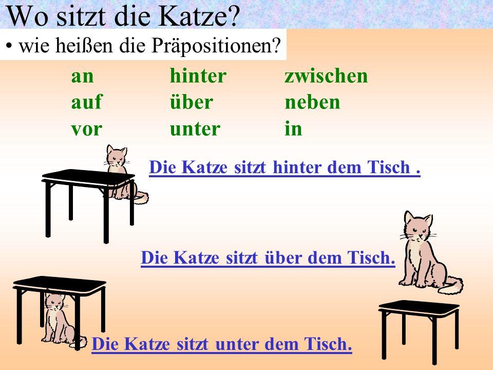 Wo sitzt die Katze? wie heißen die Präpositionen? anhinter zwischen aufüber neben vorunter in Die Katze sitzt hinter dem Tisch. Die Katze sitzt über d