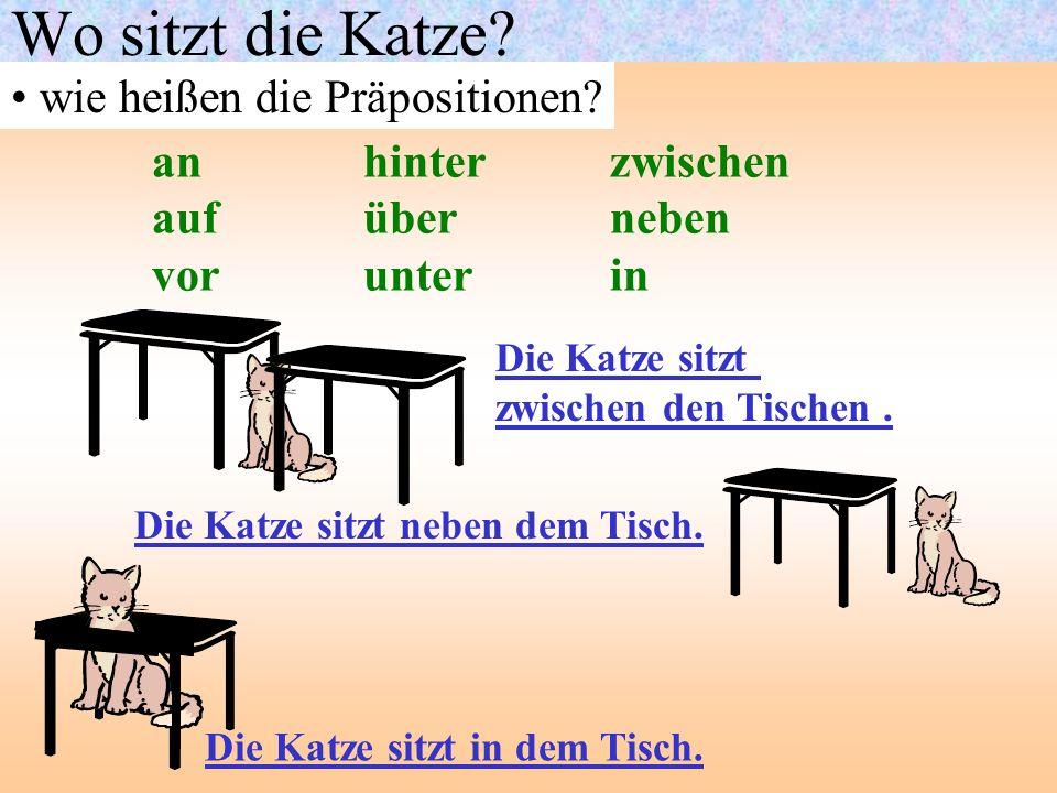 Wo sitzt die Katze? wie heißen die Präpositionen? anhinter zwischen aufüber neben vorunter in Die Katze sitzt zwischen den Tischen. Die Katze sitzt ne