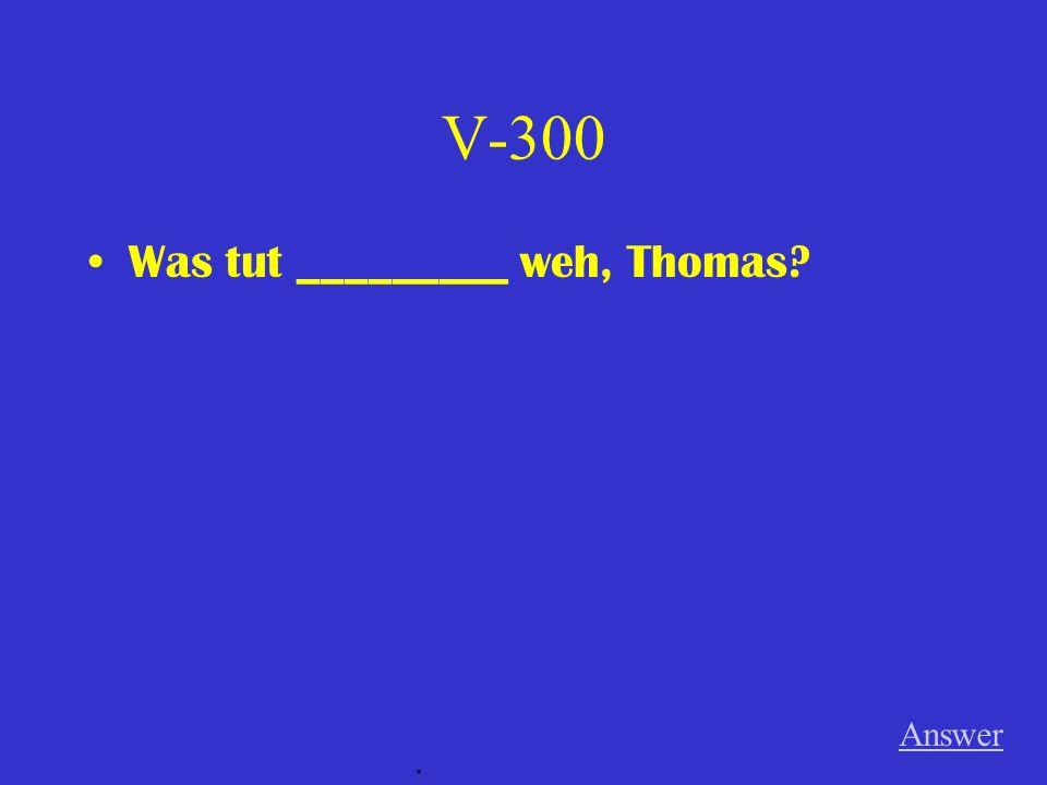 V-200 ein neues Buch lesen (ich-- Plusquamperfekt) Answer.