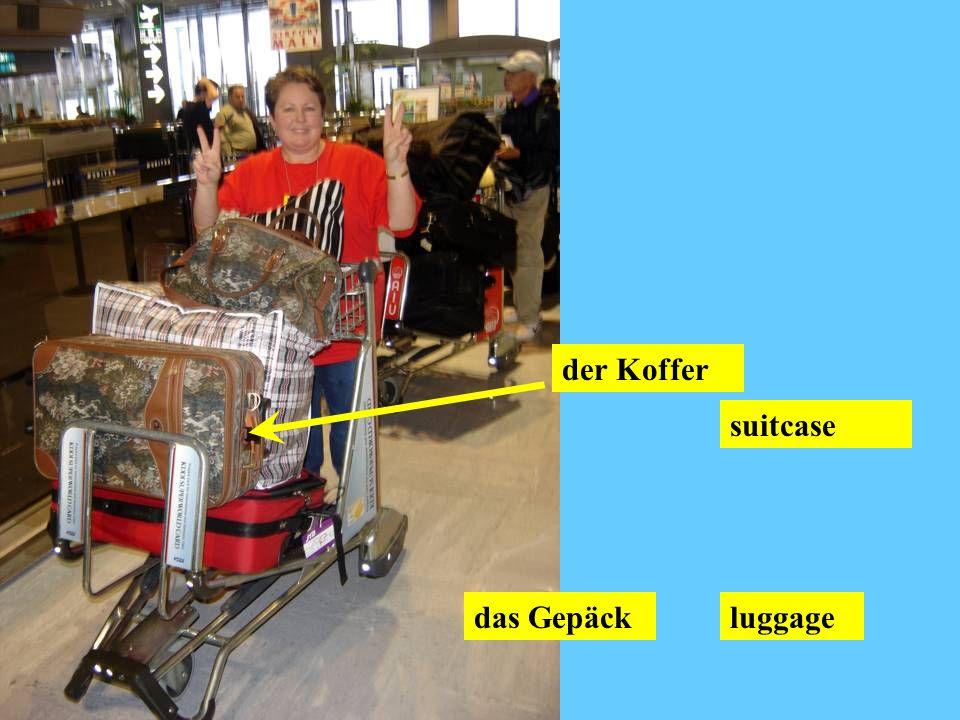 das Gepäckluggage der Koffer suitcase