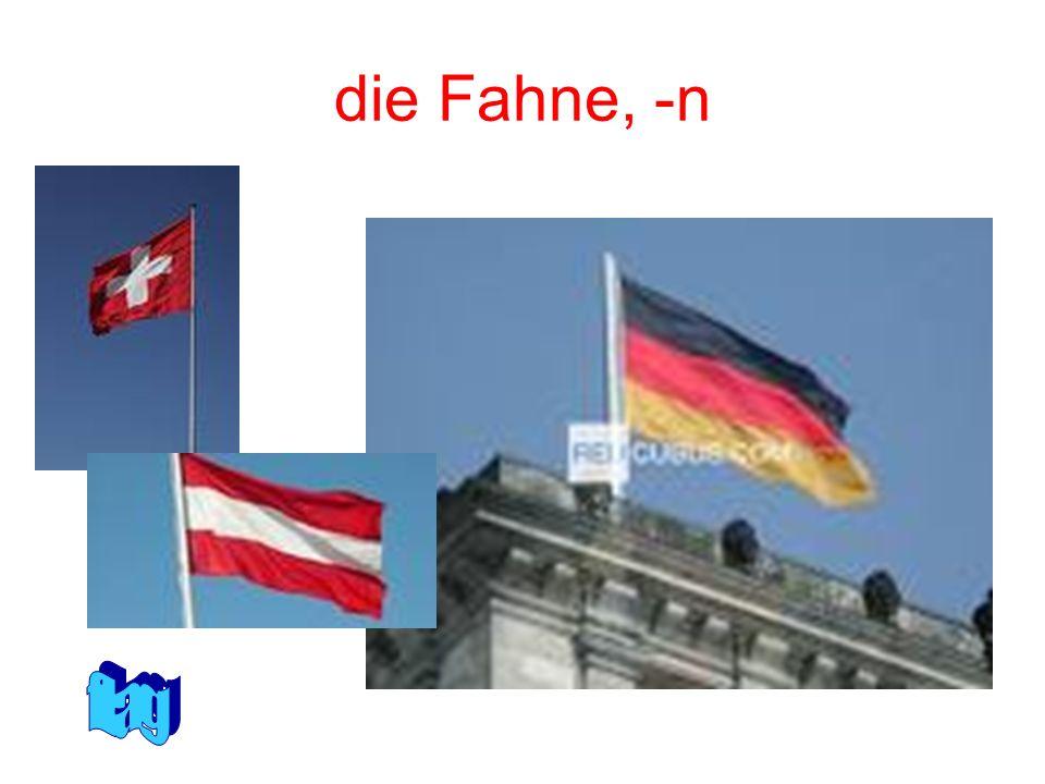 die Fahne, -n