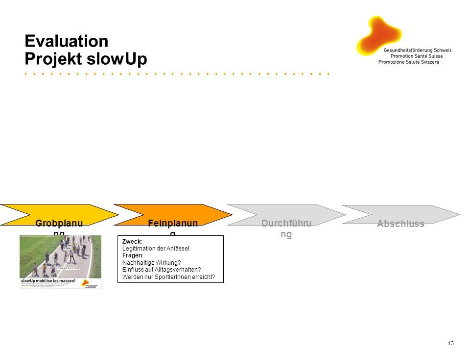 13 Evaluation Projekt slowUp Grobplanu ng Feinplanun g Durchführu ng Abschluss Zweck: Legitimation der Anlässe! Fragen: Nachhaltige Wirkung? Einfluss