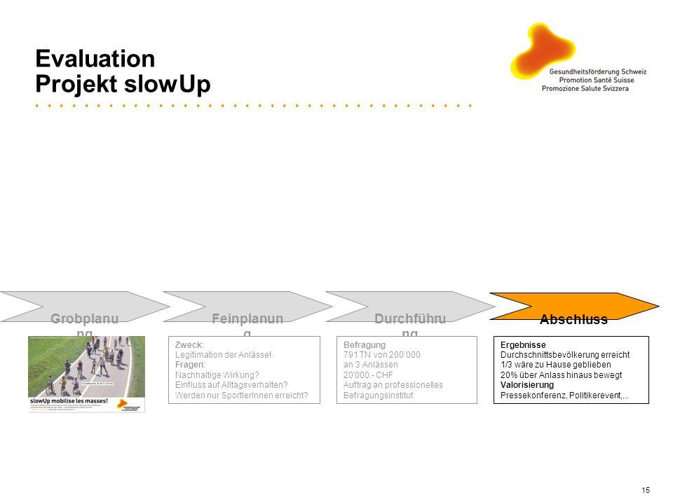 15 Evaluation Projekt slowUp Grobplanu ng Feinplanun g Durchführu ng Abschluss Zweck: Legitimation der Anlässe! Fragen: Nachhaltige Wirkung? Einfluss