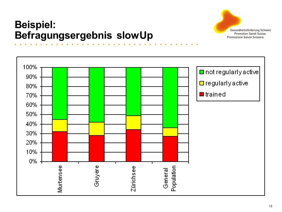 16 Beispiel: Befragungsergebnis slowUp