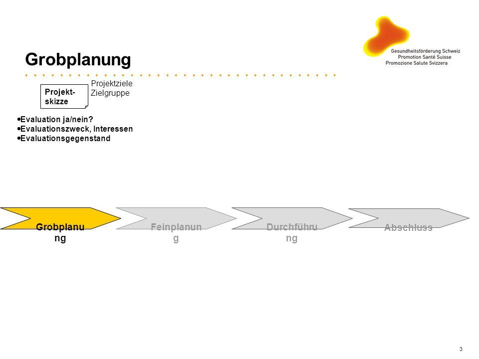 3 Grobplanung Feinplanun g Evaluation ja/nein? Evaluationszweck, Interessen Evaluationsgegenstand Projekt- skizze Projektziele Zielgruppe Durchführu n