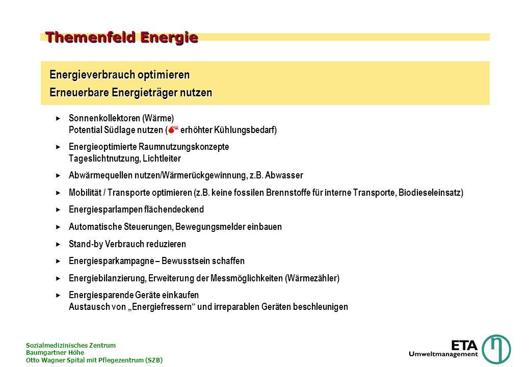Sozialmedizinisches Zentrum Baumgartner Höhe Otto Wagner Spital mit Pflegezentrum (SZB) Themenfeld Energie Energieverbrauch optimieren Erneuerbare Ene