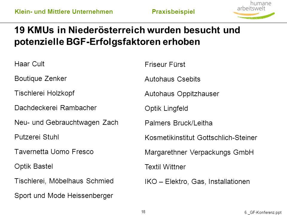 6._GF-Konferenz.ppt 18 19 KMUs in Niederösterreich wurden besucht und potenzielle BGF-Erfolgsfaktoren erhoben Haar Cult Boutique Zenker Tischlerei Hol