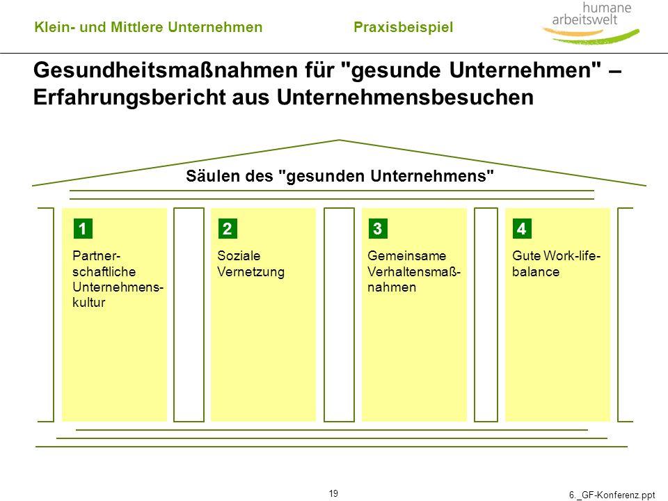 6._GF-Konferenz.ppt 19 Gesundheitsmaßnahmen für