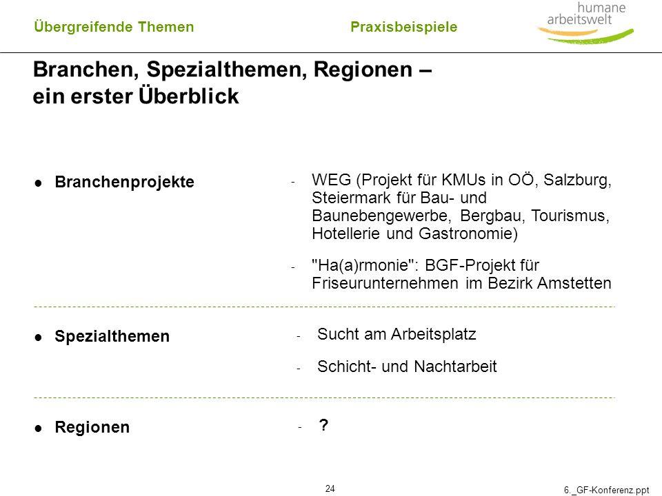 6._GF-Konferenz.ppt 24 Branchen, Spezialthemen, Regionen – ein erster Überblick Übergreifende Themen Branchenprojekte - WEG (Projekt für KMUs in OÖ, S