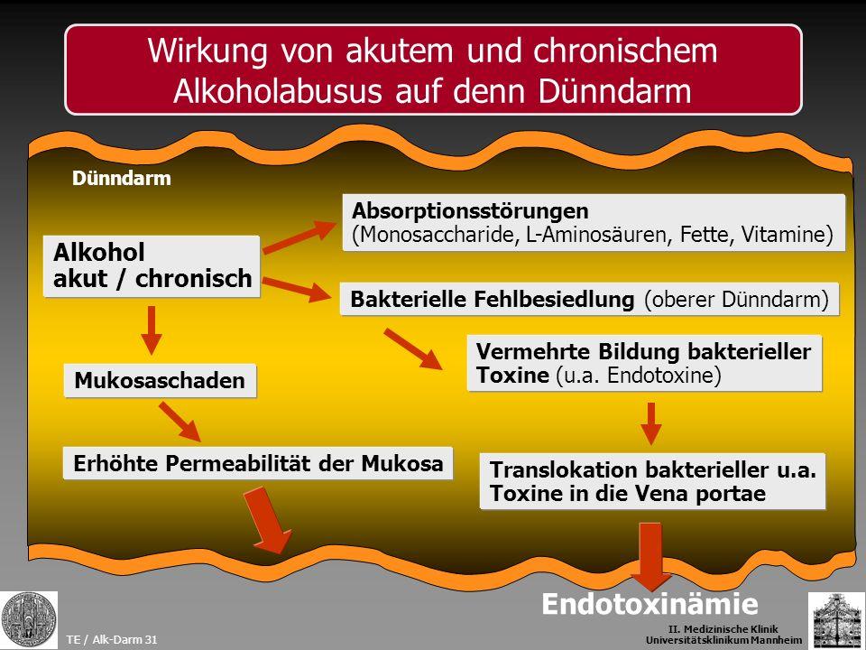 Alkohol akut / chronisch Absorptionsstörungen (Monosaccharide, L-Aminosäuren, Fette, Vitamine) Erhöhte Permeabilität der Mukosa Translokation bakterie