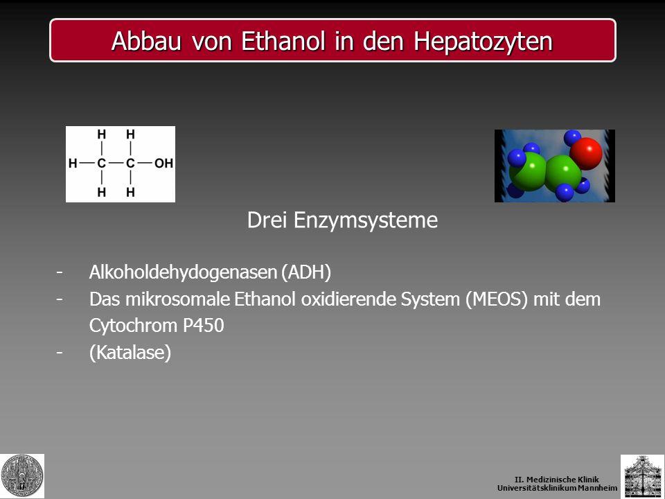 Abbau von Ethanol in den Hepatozyten Drei Enzymsysteme -Alkoholdehydogenasen (ADH) -Das mikrosomale Ethanol oxidierende System (MEOS) mit dem Cytochro