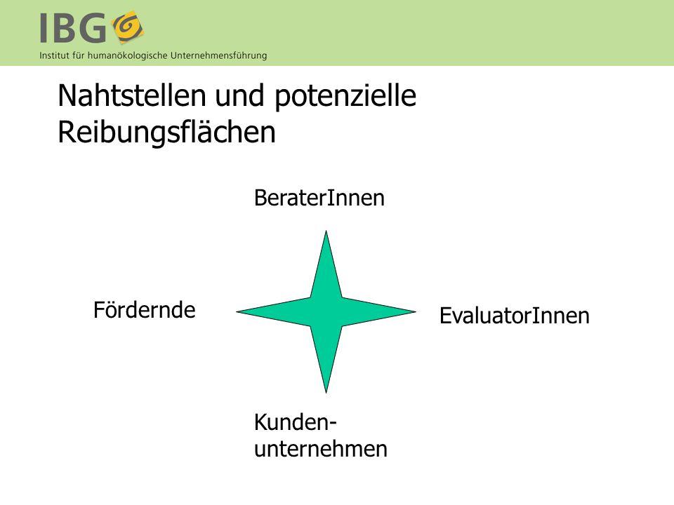 Nahtstellen und potenzielle Reibungsflächen BeraterInnen Fördernde EvaluatorInnen Kunden- unternehmen