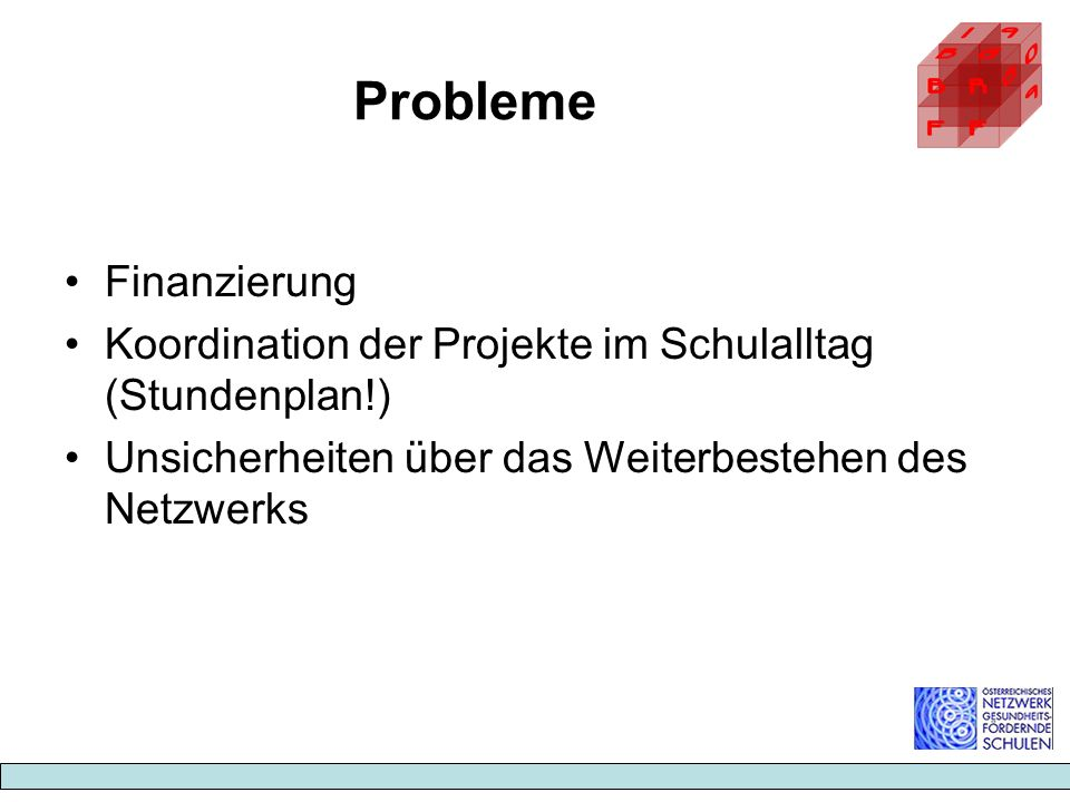 Probleme Finanzierung Koordination der Projekte im Schulalltag (Stundenplan!) Unsicherheiten über das Weiterbestehen des Netzwerks