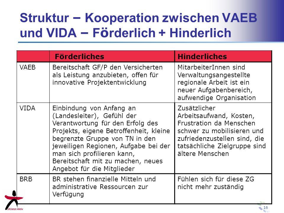 16 Struktur – Kooperation zwischen VAEB und VIDA – F ö rderlich + Hinderlich FörderlichesHinderliches VAEBBereitschaft GF/P den Versicherten als Leist
