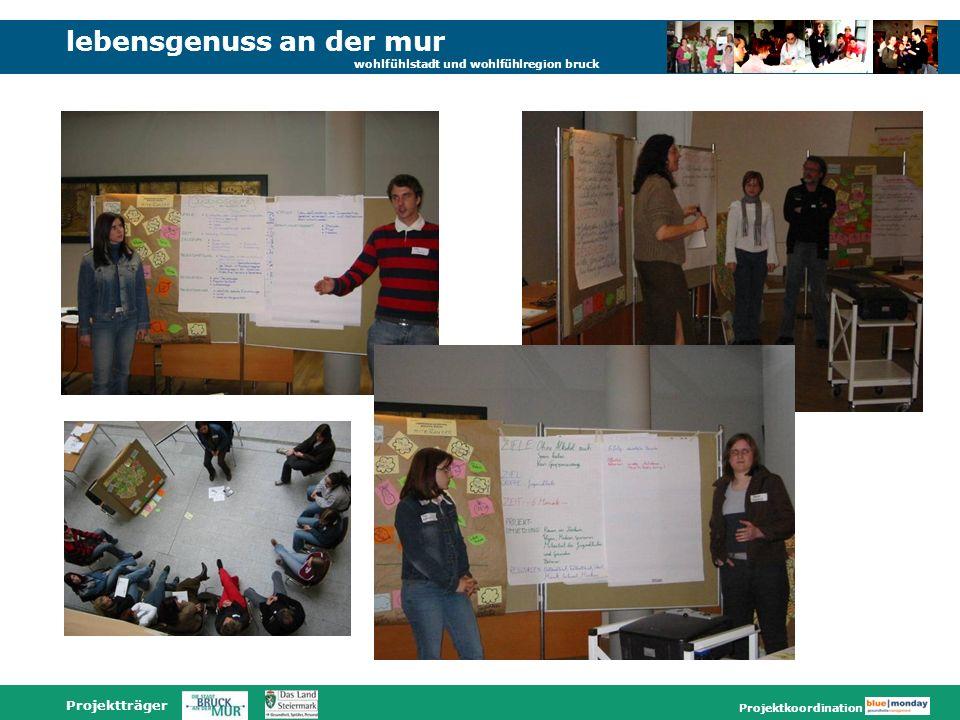 lebensgenuss an der mur wohlfühlstadt und wohlfühlregion bruck Projektträger Projektkoordination