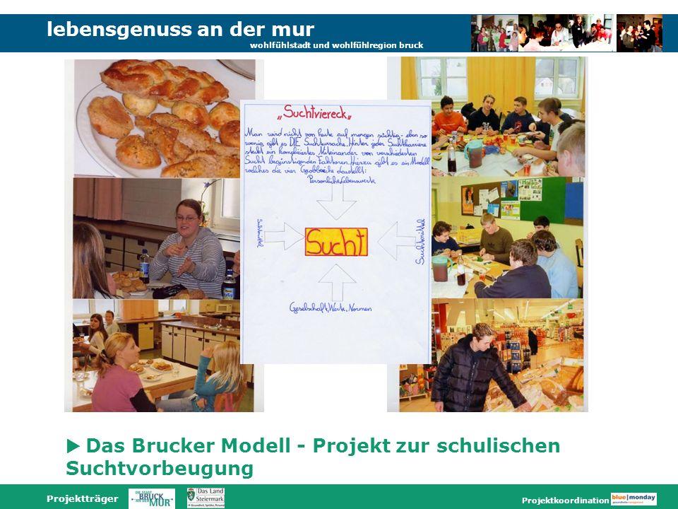 lebensgenuss an der mur wohlfühlstadt und wohlfühlregion bruck Projektträger Projektkoordination Das Brucker Modell - Projekt zur schulischen Suchtvor