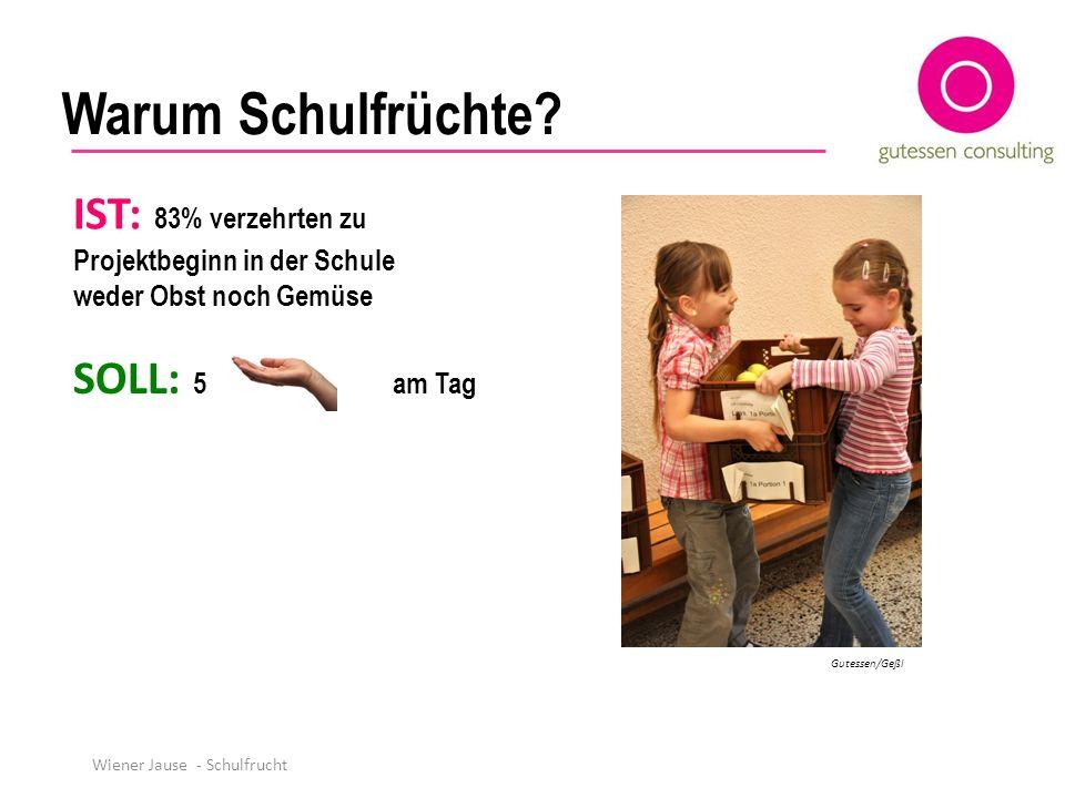 Warum Schulfrüchte? SOLL: 5 am Tag IST: 83% verzehrten zu Projektbeginn in der Schule weder Obst noch Gemüse Gutessen/Geßl Wiener Jause - Schulfrucht