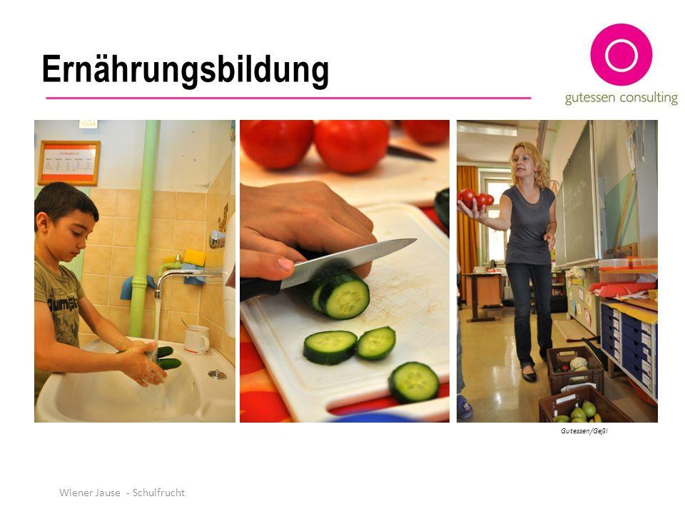 Ernährungsbildung Gutessen/Geßl Wiener Jause - Schulfrucht