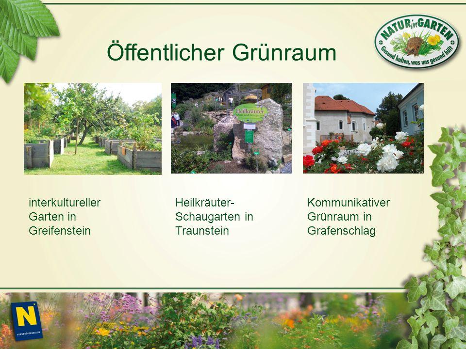 interkultureller Garten in Greifenstein Heilkräuter- Schaugarten in Traunstein Kommunikativer Grünraum in Grafenschlag Öffentlicher Grünraum