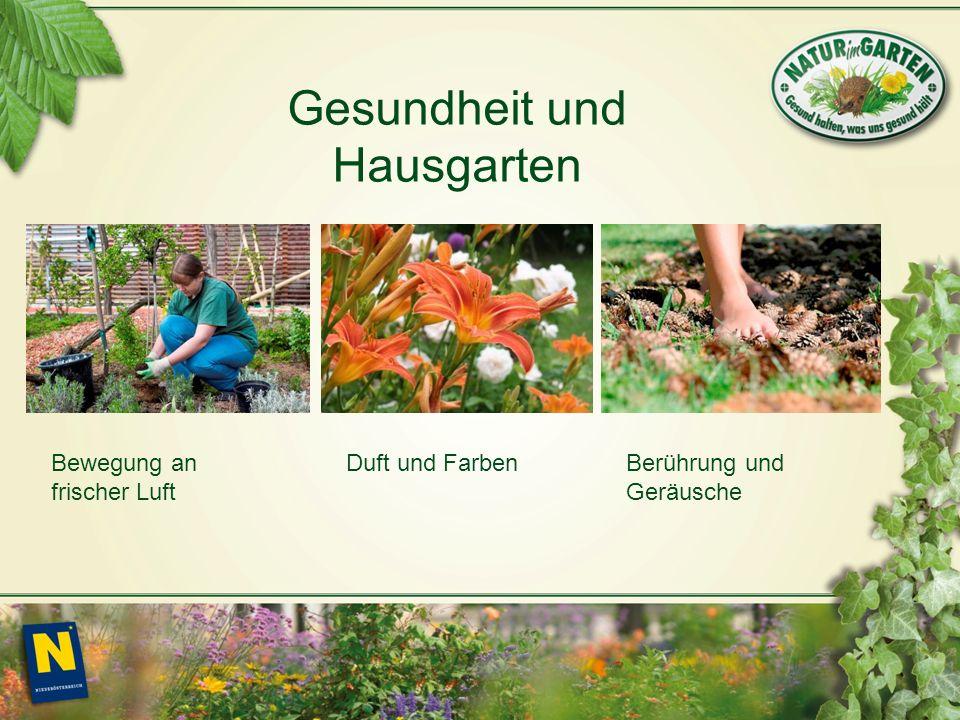 Bewegung an frischer Luft Duft und FarbenBerührung und Geräusche Gesundheit und Hausgarten