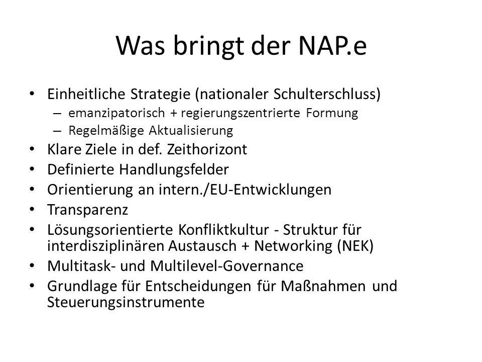 Was bringt der NAP.e Einheitliche Strategie (nationaler Schulterschluss) – emanzipatorisch + regierungszentrierte Formung – Regelmäßige Aktualisierung