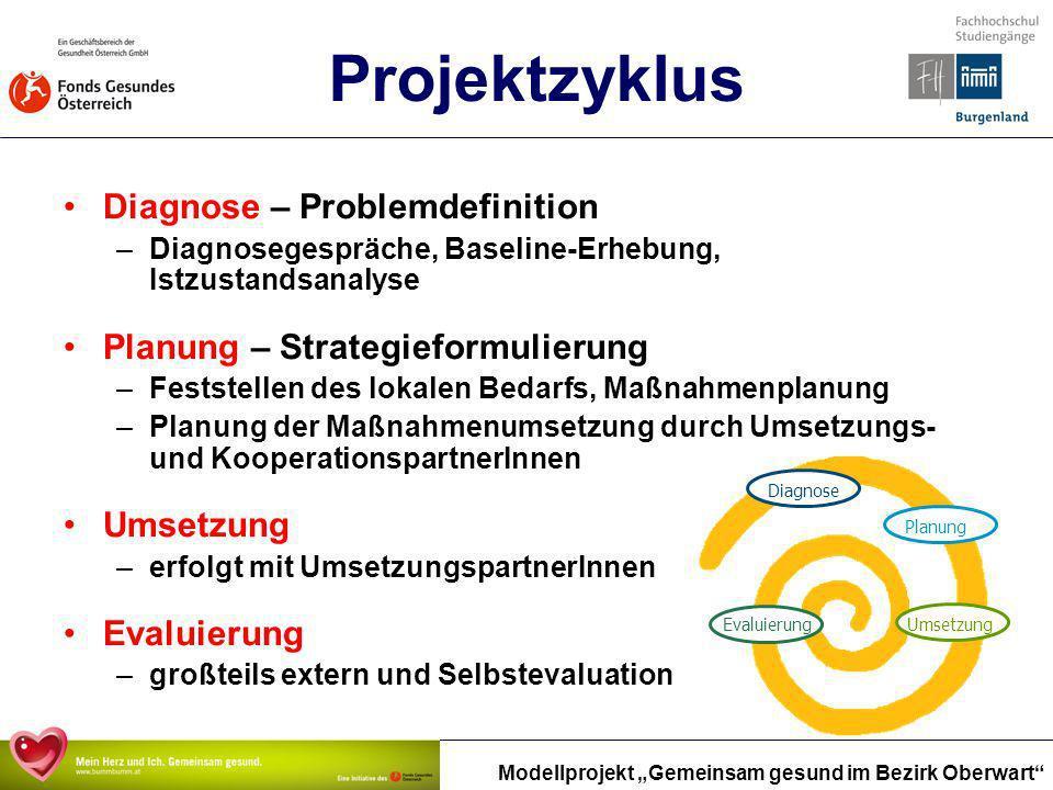 Modellprojekt Gemeinsam gesund im Bezirk Oberwart Projektzyklus Diagnose – Problemdefinition –Diagnosegespräche, Baseline-Erhebung, Istzustandsanalyse