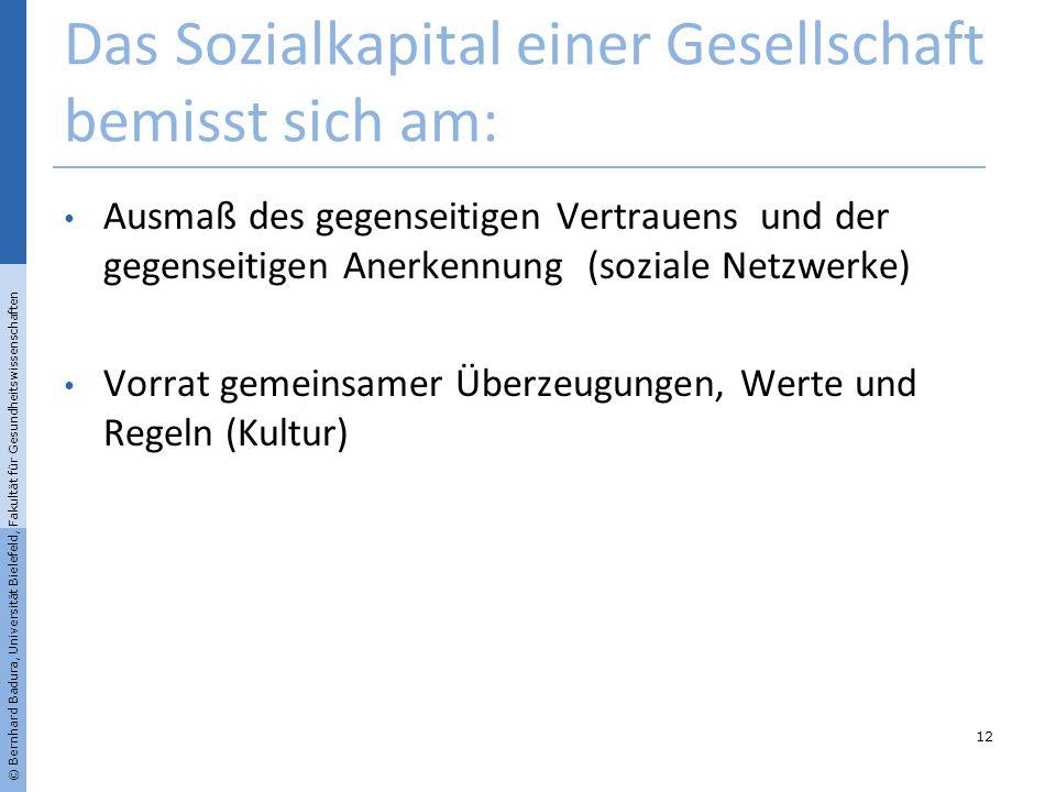 Das Sozialkapital einer Gesellschaft bemisst sich am: Ausmaß des gegenseitigen Vertrauens und der gegenseitigen Anerkennung (soziale Netzwerke) Vorrat