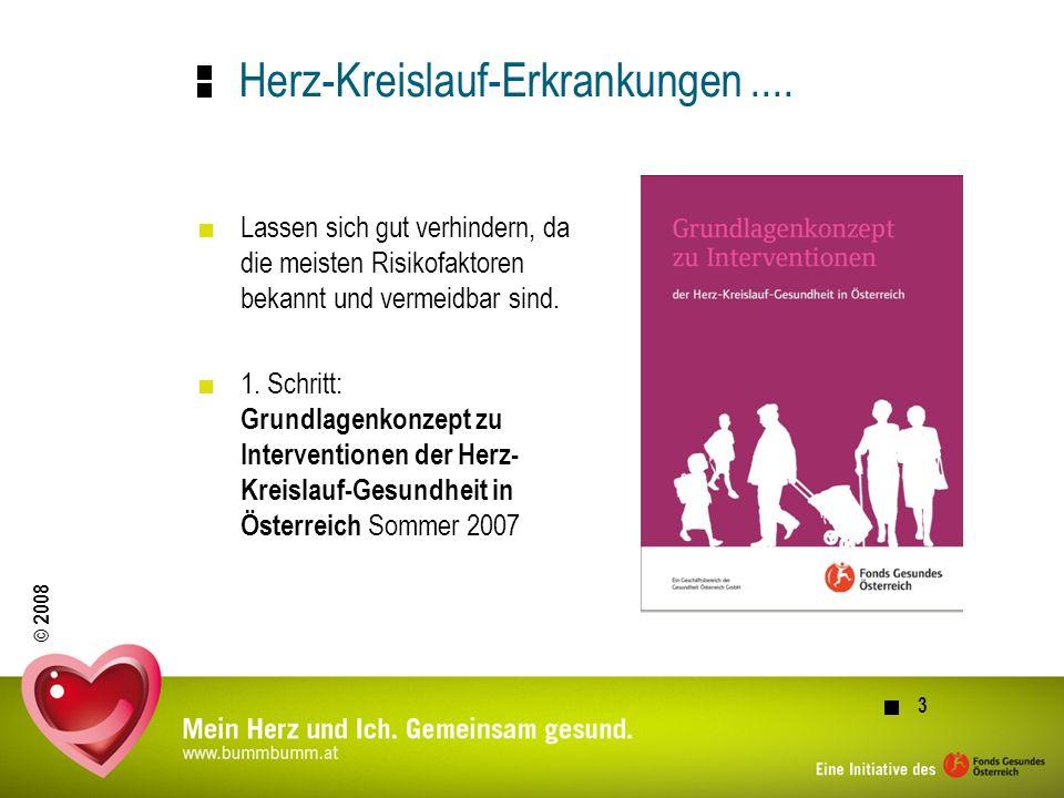 © 2008 4 Die Maßnahmen im Rahmen des Schwerpunkts Herz-Kreislaufgesundheit im FGÖ Medienkampagne Regionale und kampagnenbegleitende Aktivitäten Modellprojekte, je eines im Burgenland und Kärnten Praxisorientierte Projekte in der Gemeinde