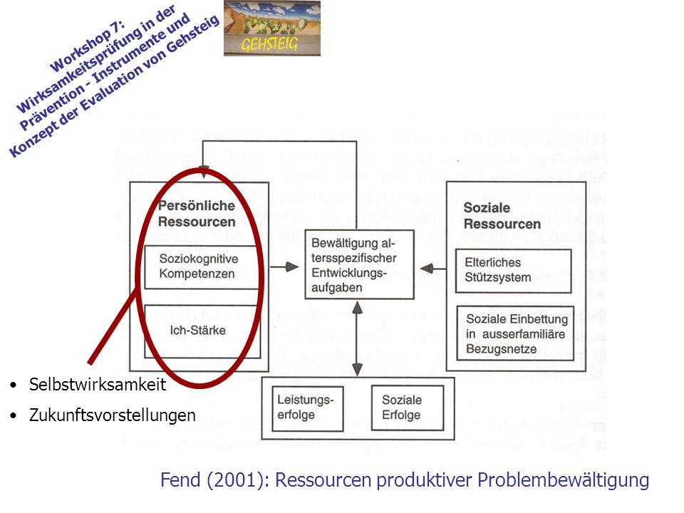 Workshop 7: Wirksamkeitsprüfung in der Prävention - Instrumente und Konzept der Evaluation von Gehsteig Fend (2001): Ressourcen produktiver Problembewältigung Selbstwirksamkeit Zukunftsvorstellungen