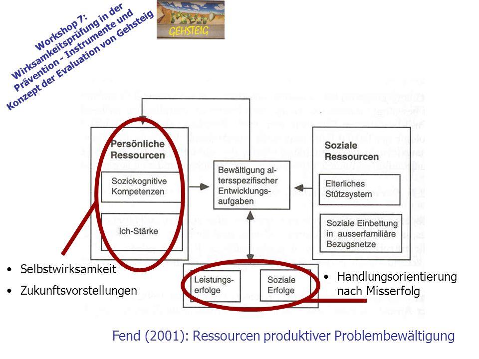Workshop 7: Wirksamkeitsprüfung in der Prävention - Instrumente und Konzept der Evaluation von Gehsteig Fend (2001): Ressourcen produktiver Problembewältigung Selbstwirksamkeit Zukunftsvorstellungen Handlungsorientierung nach Misserfolg