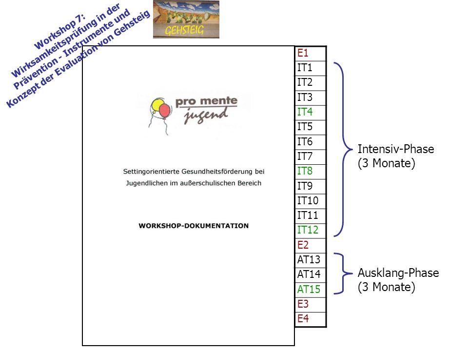 E1 IT1 IT2 IT3 IT4 IT5 IT6 IT7 IT8 IT9 IT10 IT11 IT12 E2 AT13 AT14 AT15 E3 E4 Workshop 7: Wirksamkeitsprüfung in der Prävention - Instrumente und Konzept der Evaluation von Gehsteig Intensiv-Phase (3 Monate) Ausklang-Phase (3 Monate)
