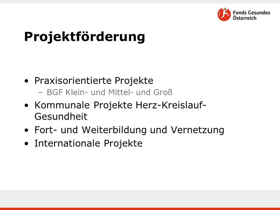 Projektförderung Praxisorientierte Projekte –BGF Klein- und Mittel- und Groß Kommunale Projekte Herz-Kreislauf- Gesundheit Fort- und Weiterbildung und Vernetzung Internationale Projekte