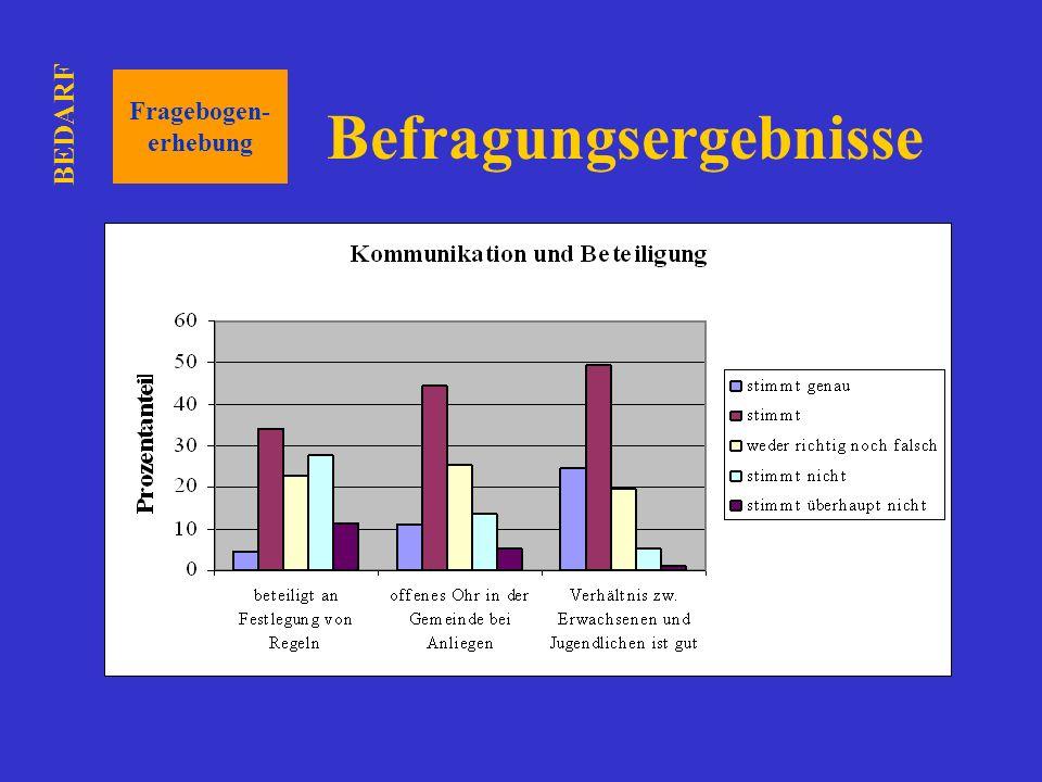 Befragungsergebnisse Fragebogen- erhebung BEDARF
