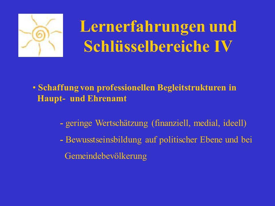 Lernerfahrungen und Schlüsselbereiche IV Schaffung von professionellen Begleitstrukturen in Haupt- und Ehrenamt - geringe Wertschätzung (finanziell, m