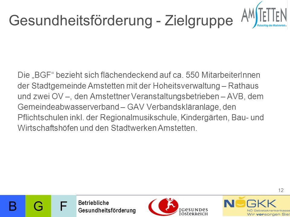 BFG Betriebliche Gesundheitsförderung 12 Gesundheitsförderung - Zielgruppe Die BGF bezieht sich flächendeckend auf ca.