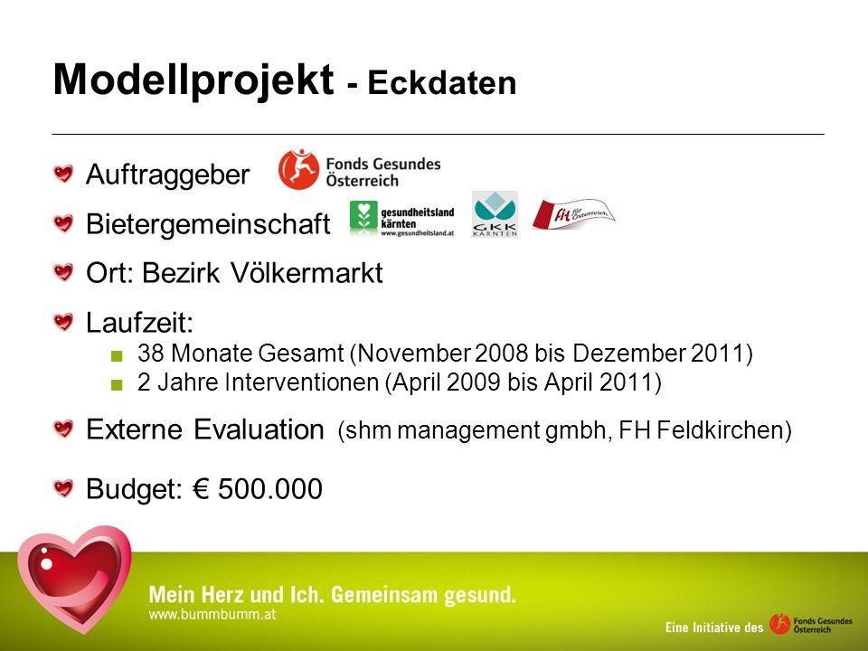 Modellprojekt - Eckdaten Auftraggeber Bietergemeinschaft Ort: Bezirk Völkermarkt Laufzeit: 38 Monate Gesamt (November 2008 bis Dezember 2011) 2 Jahre