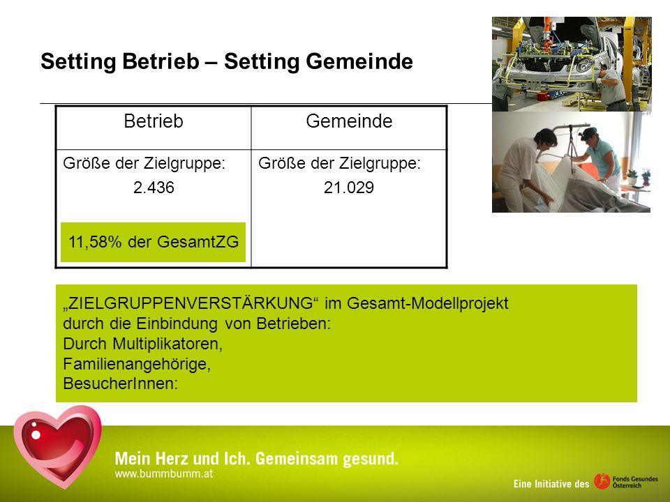 Setting Betrieb – Setting Gemeinde BetriebGemeinde Größe der Zielgruppe: 2.436 Größe der Zielgruppe: 21.029 11,58% der GesamtZG ZIELGRUPPENVERSTÄRKUNG