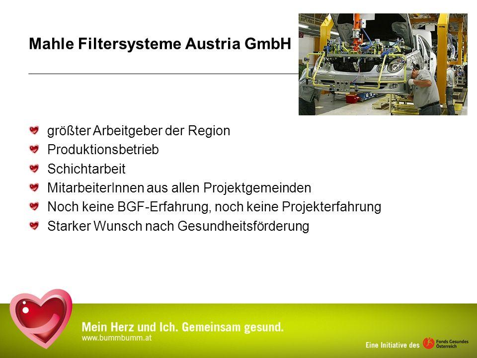 Mahle Filtersysteme Austria GmbH größter Arbeitgeber der Region Produktionsbetrieb Schichtarbeit MitarbeiterInnen aus allen Projektgemeinden Noch kein