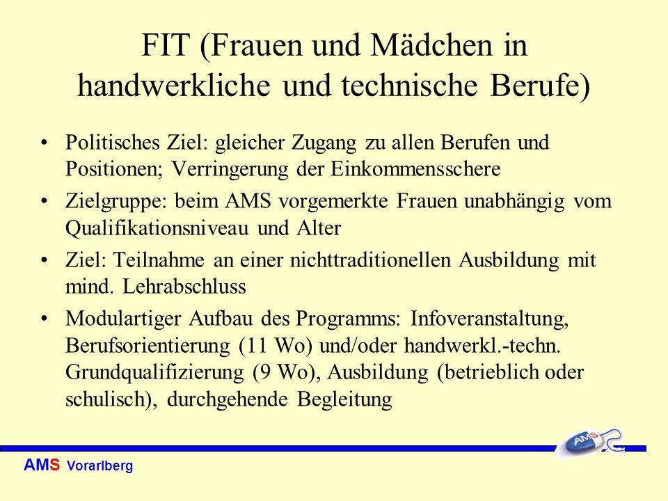 AMS Vorarlberg FIT (Frauen und Mädchen in handwerkliche und technische Berufe) Politisches Ziel: gleicher Zugang zu allen Berufen und Positionen; Verr
