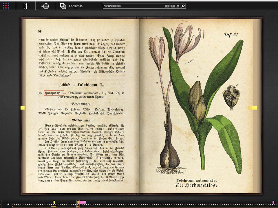 17 Buchverlinkung am besten live ansehen: Links von Webseite auf Buchseite und umgekehrt, auch natürlich von Buchseite zu anderer Buchseite.