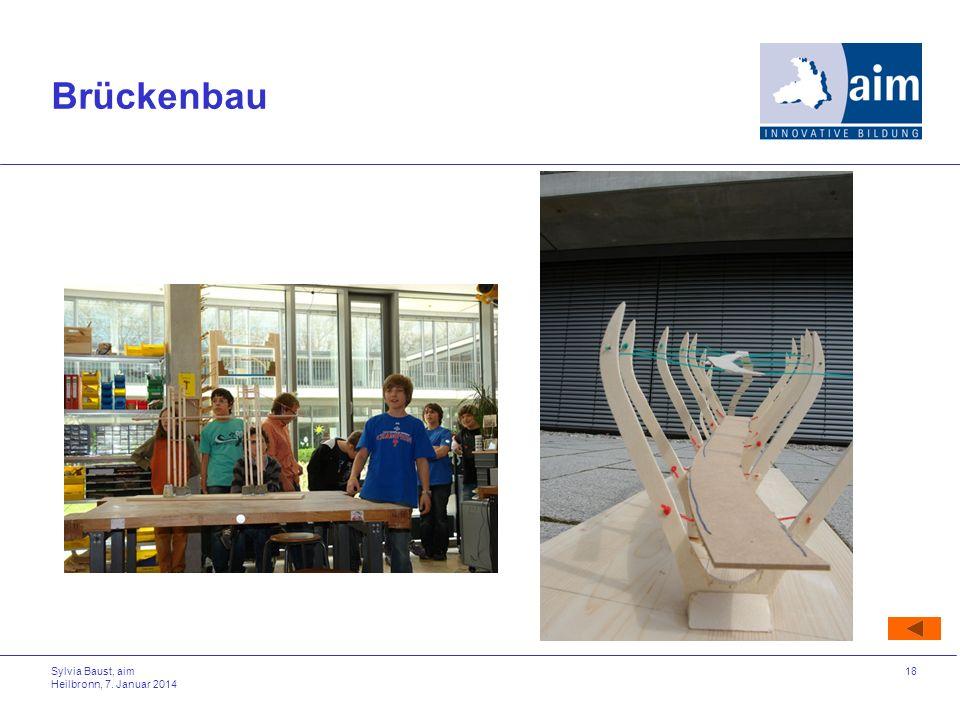 Sylvia Baust, aim Heilbronn, 7. Januar 2014 18 Brückenbau