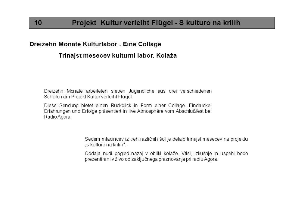 10 Projekt Kultur verleiht Flügel - S kulturo na krilih Dreizehn Monate Kulturlabor.