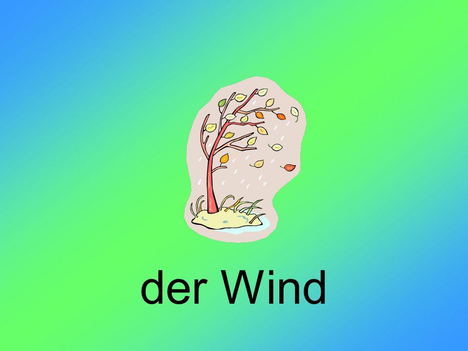 der Wind